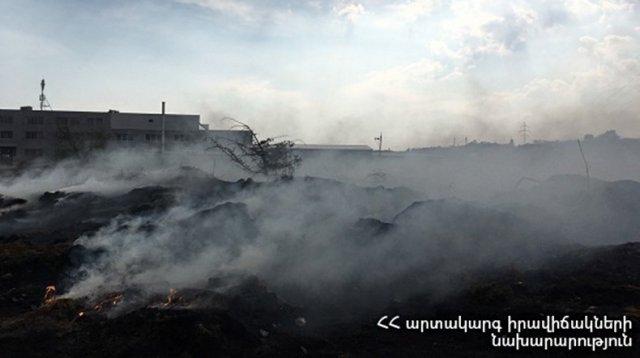 В результате пожара на территории пантеона «Ераблур» в Ереване полностью сгорели 10 деревьев
