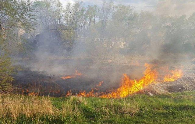 Пожарные-спасатели потушили пожары на травяных участках около 29 га. МЧС