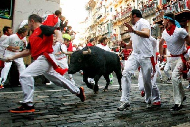 Во время забега с быками на фестивале в Испании пострадали пять человек