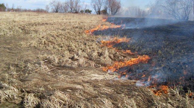 МЧС Армении предупреждает о высоком риске возникновения пожара в ближайшие 5 дней