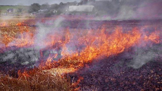 МЧС Армении: В течение следующих 5 дней ожидается высокий риск возникновения пожара