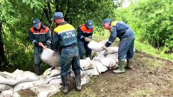 Паводок в Приамурье подтопил более трех тысяч опор ЛЭП