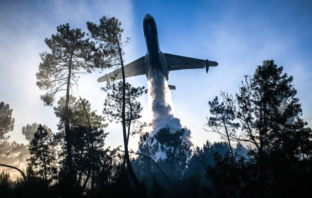 Авиация МЧС России приступила к тушению лесных пожаров в Сибири