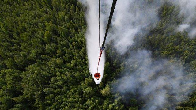 Пожары в Сибири продолжатся до осенних дождей