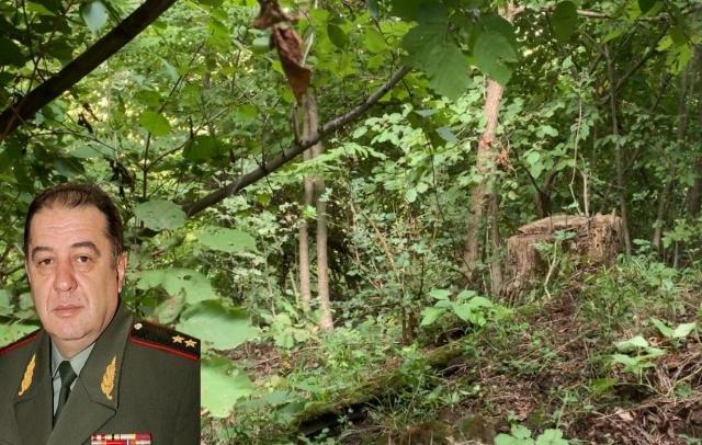 Генерал-лейтенант Аршалуйс Пайтян не платит за арендованные им 35 га леса