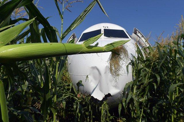 Родились заново: Полный список пассажиров самолета А321 Москва-Симферополь, жестко севшего в поле