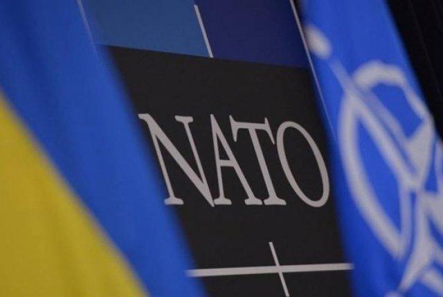 США считают, что Украина может претендовать на членство в НАТО