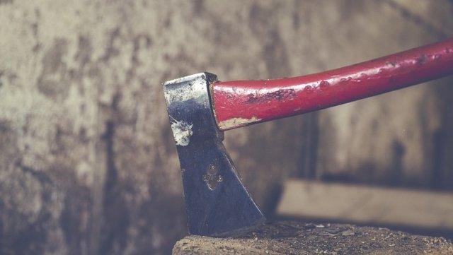 Ульяновский подросток зарубил топором свою семью и покончил с собой