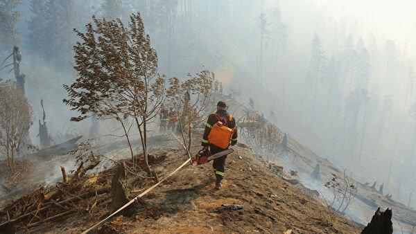 В Грузии горит около сорока гектаров леса