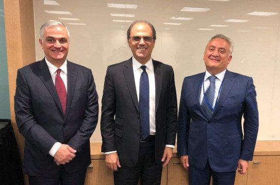 Артур Джавадян встретился с исполнительным директором голландско-бельгийской подгруппы МВФ