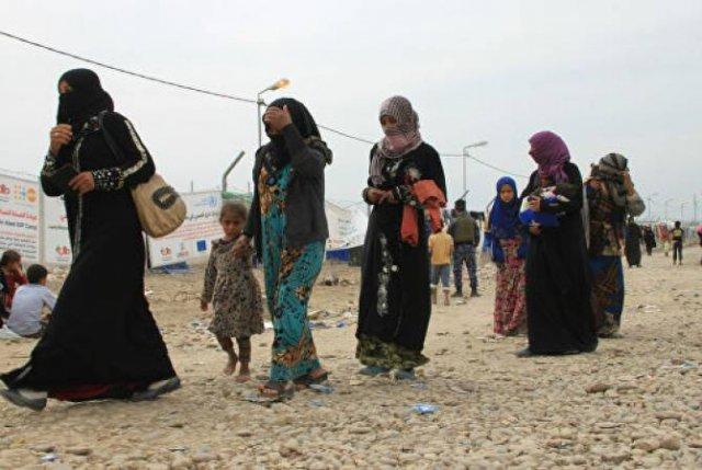 Свыше семи тысяч беженцев прибыли в Ирак за неделю