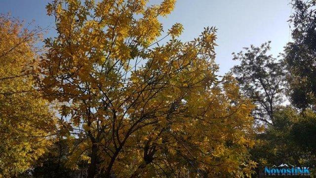 В Армении воздух прогреется на 7-9 градусов, осадков не ожидается