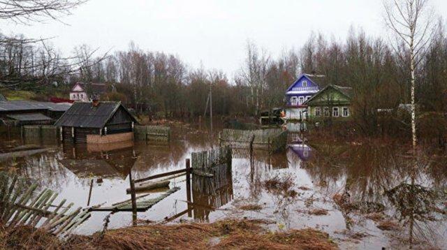 В России почти 40 поселений остаются подтопленными на северо-западе страны