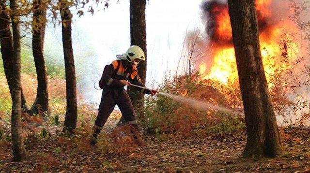 В Сочи лесной пожар охватил национальный парк