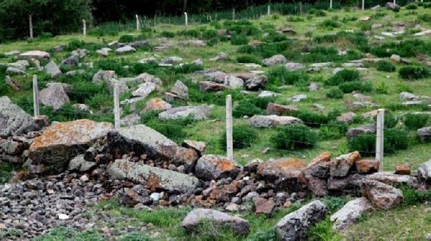 В столице Турции осквернили армянское кладбище: на территории разбросаны человеческие кости
