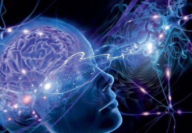 Исследование: Мозг способен запомнить новое слово всего за два часа